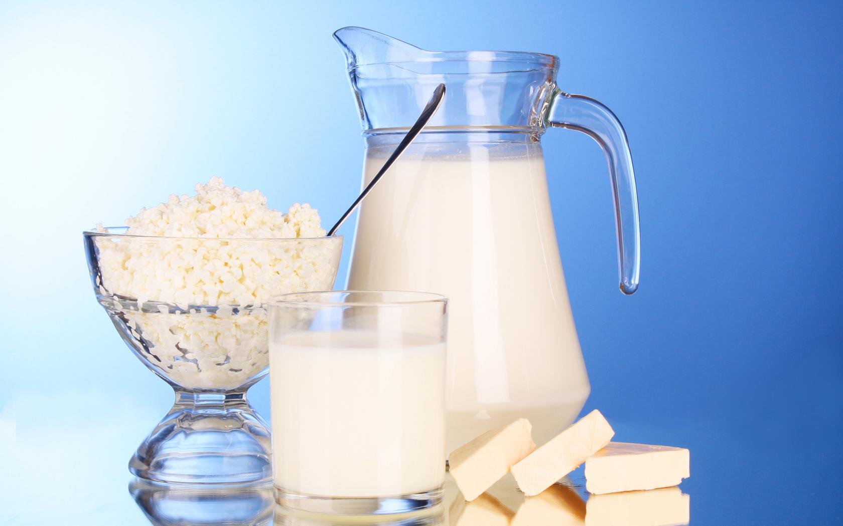 sut-yogurt-peynir
